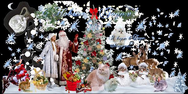 Новогодние открытки. Очень трогательная новогодняя открытка, которая сделана в виде фото-коллажа. На белом фоне ярко светят голубые звёзды и снежинки, а возле шикарной новогодней ёлки дедушка Мороз вместе со своей внучкой Снегурочкой смотрят куда-то в небо. Вокруг них много новогодних подарков  и разных животных – это и кошки, и зайки, и даже семейство оленей. Рядом летают птички, и стоят два чудесных снеговика.
