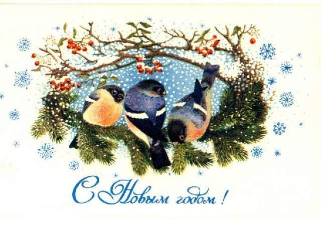 Новогодние открытки. Милая новогодняя открытка для всех любителей птиц и новогодних праздников. На этой новогодней открытке мы видим трёх чудесных птичек, которые собрались вместе встретить Новый год. У них есть и угощение – ягоды и шишечки. А что нужно для отличной встречи Нового года, кроме тёплой компании и хорошего угощения?