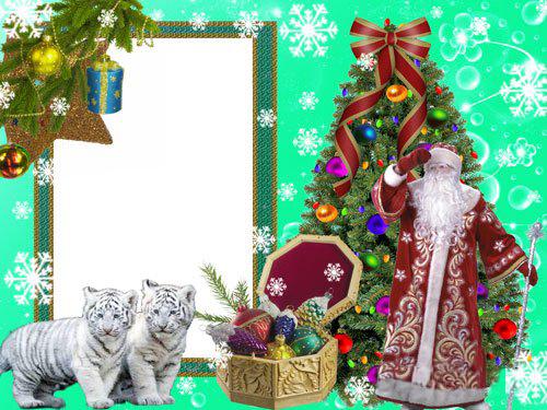 Новогодние рамки. Роскошная новогодняя рамка для фотографий взрослых и детей на зелёном фоне с белоснежными узорными снежинками и прозрачными цветочками. Новогодняя рамка для фотошопа поможет Вам создать уникальное оформление для фото, которое порадует всю семью. Новогодняя рамка обязательно понравится всем, кто неравнодушен к семейству кошачьих.