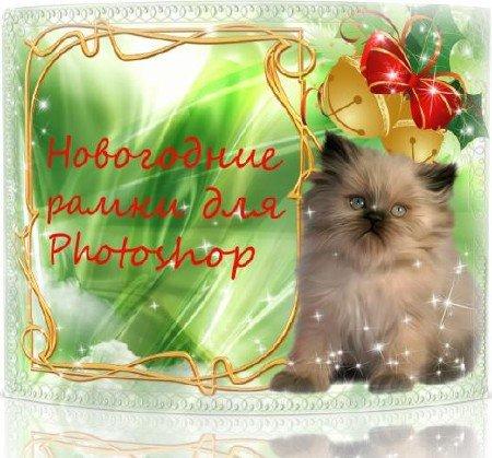 Новогодние рамки. Потрясающая новогодняя рамка для фото на необычном зелёном фоне с вспышками звёзд и россыпью блёсток. Новогодняя рамка для фотографий подойдёт всем, кто любит котят, ведь здесь мы видим роскошного пушистого котёнка, при виде которого дрогнет даже каменное сердце. Новогодняя рамка для фото – лучший подарок!