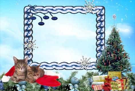 Новогодние рамки. Симпатичная новогодняя рамка для горизонтальных фотографий на голубом фоне, украшенная еловыми ветками и новогодними подарками. С краю сидят два восхитительных полосатых котёнка в шапке деда Мороза, а с другой стороны стоит замечательная ёлочка, которую уже нарядили для встречи Нового года.