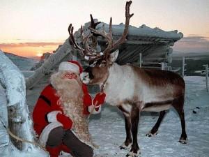 Санта и его олень