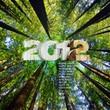 Новогодние картинки 2012 - №1041