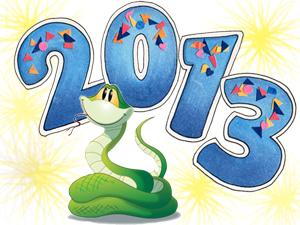 Надпись 2013 выполнена синими цифрами на белом фоне с жёлтым пухом. Между цифрами 2 и 0 нарисована чудесная зелёненькая змея с высунутым языком