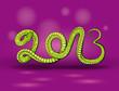 Зелёный змей изгибаясь образует надпись 2013.