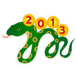 Зелёная змея с жёлтыми кружочками несущая на спине надпись 2013.