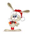 Кролик прячет морковку за спиной