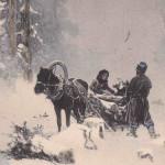 Год Лошади - открытки (17)