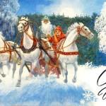 Год Лошади - открытки (2)