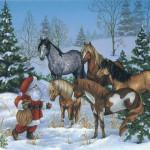 Год Лошади - открытки (3)