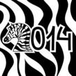 Лошади и надписи 2014 (1)