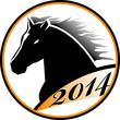 Лошади и надписи 2014 (25)