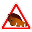 Лошади и надписи 2014 (31)