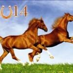 Новогодние открытки 2014 (3)