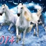 Новогодние открытки 2014 (4)