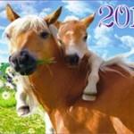 Новогодние открытки 2014 (5)