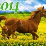 Новогодние открытки 2014 (6)