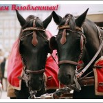 Открытки к году Лошади (12)