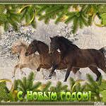 Открытки к году Лошади (5)