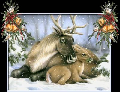 christmas_animls (13)