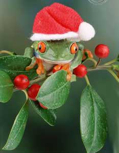 merry_christmas (2)