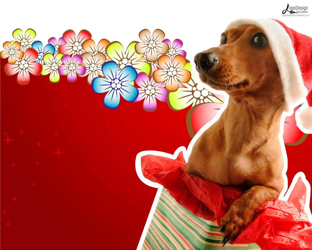 new-year-dog (4)