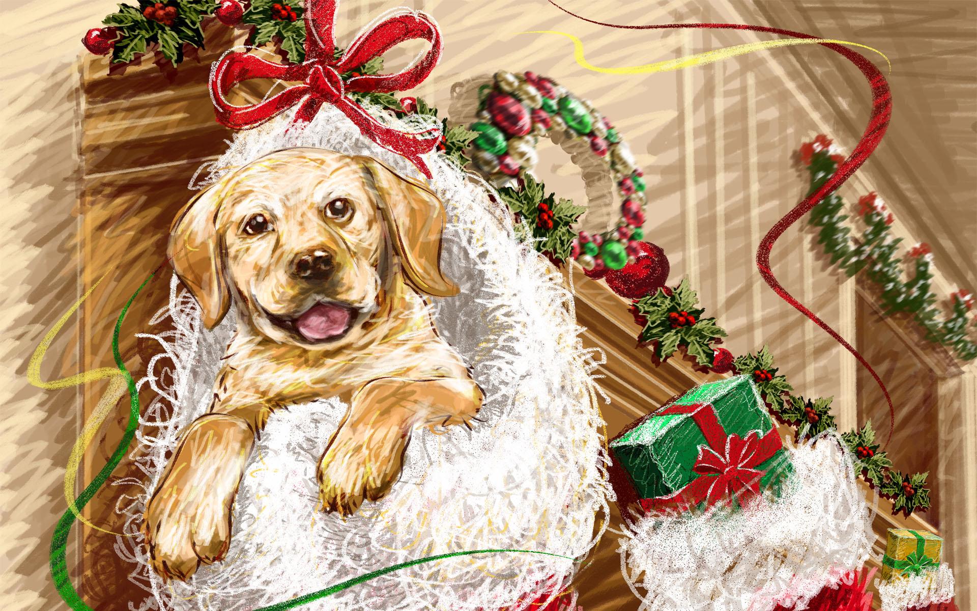 new-year-dog (5)