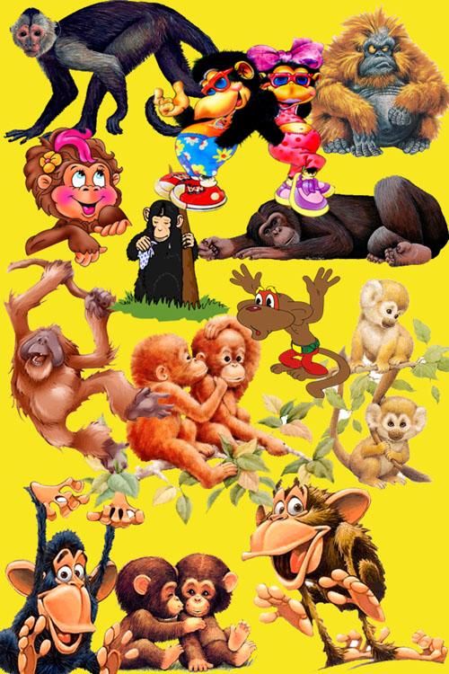 Шутки про обезьян