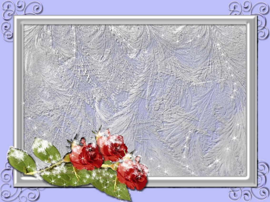 Новогодние рамки. Простая и элегантная новогодняя рамка для фото, с необычной узорной подложкой. Чтобы новогодняя рамка действительно поражала воображение, нужно обязательно сделать фотографию слегка прозрачной, чтобы были видны волшебные морозные узоры. Такая новогодняя рамка придаст лёгкость и загадочность женскому или детскому портрету. Новогодняя рамка также украшена слегка подмёрзшими розами.