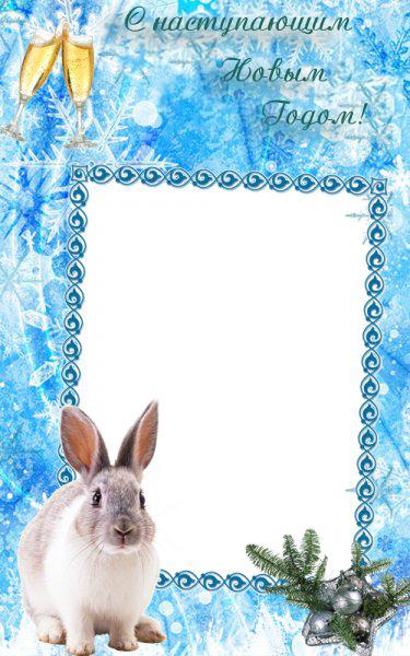 Новогодние рамки. Элегантная новогодняя рамка для вертикальных фотографий на нежно-голубом фоне с красивыми узорами и снежинками. Новогодняя рамка украшена еловой веткой с серебряными шарами. В другом краю рамки сидит хорошенький кролик. А сверху поздравительная надпись «С наступающим Новым годом!» и два бокала шампанского. Замечательная новогодняя рамка для поздравления друзей и коллег, в которую можно вставить их фотографии или поздравительный текст.
