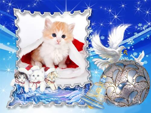 Новогодние рамки. Изумительная новогодняя рамка для детских фотографий и любителей кошек. На фоне красивого сине-голубого неба с яркими звёздами расположена новогодняя рамка, сделанная в виде почтовой марки. В нижнем углу новогодней рамки – трое милых котят в новогодних шапочках. С правой стороны два голубя несут красивый елочный шарик, чтобы украсить новогоднюю ёлку. Замечательная новогодняя открытка для квадратных фото.