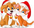 Котёнок и щенок в новогодних шапках