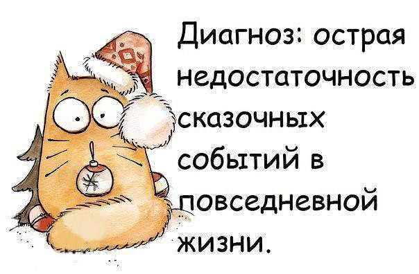 Новогодние открытки с кошками (5)
