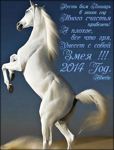 Новогодние открытки с лошадкой (19)