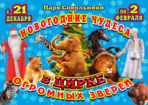 Новогодние чудеса в цирке огромных зверей