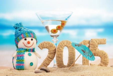 2015 new year (2)