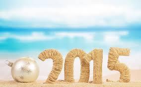 2015 new year (3)