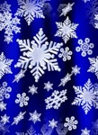 blue-new-year-2 (10)