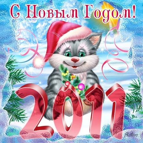 cat new year (30)