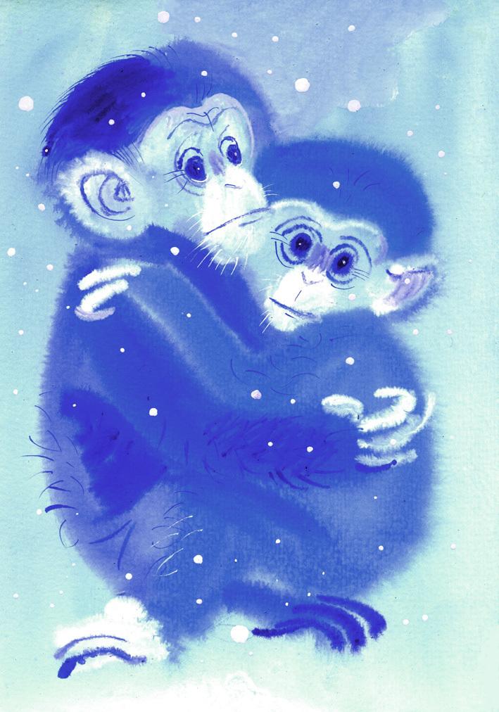 monkey christmas (131)