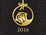 год обезьяны (12)