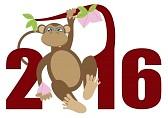 год обезьяны (16)